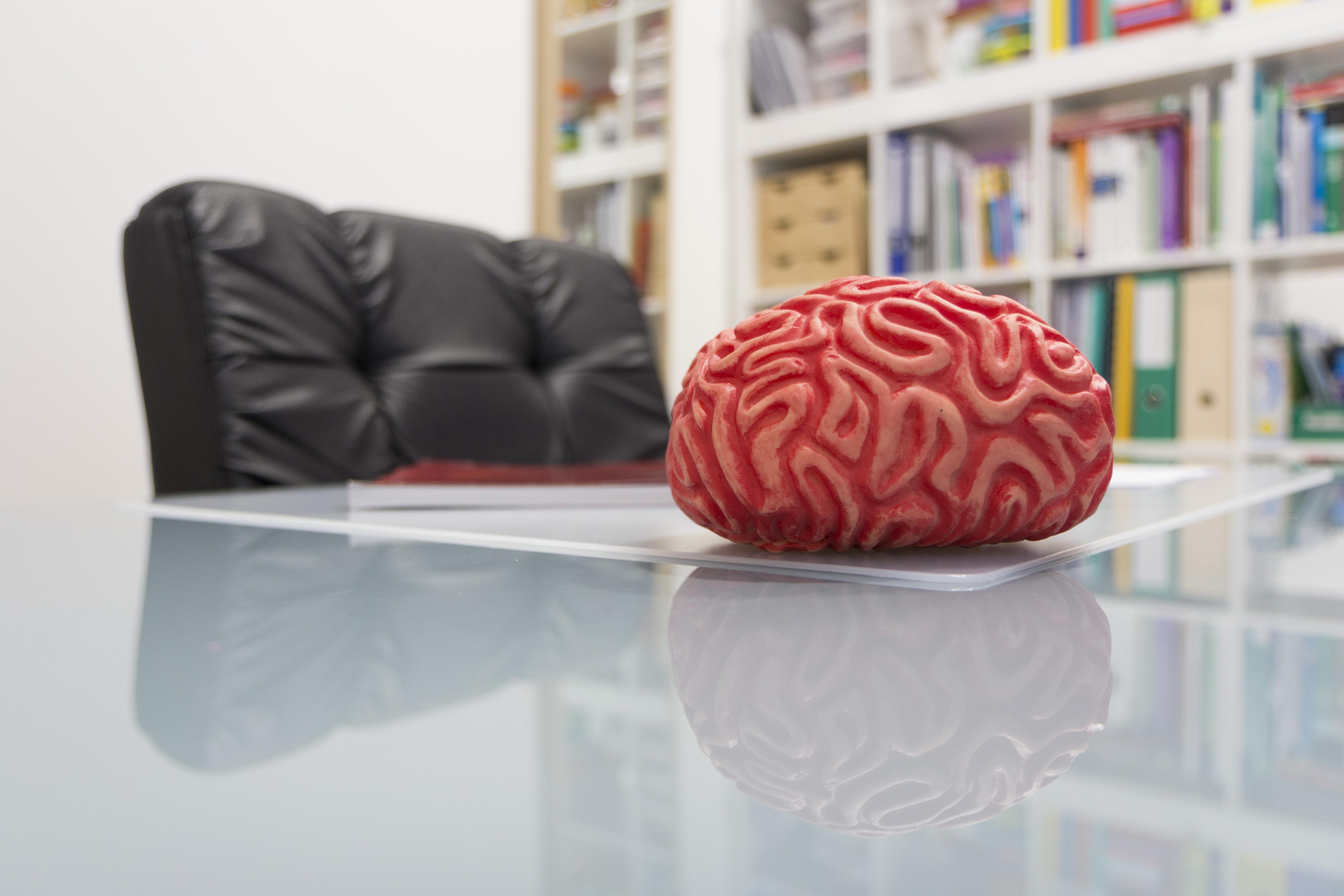 Neuropsicología en adultos